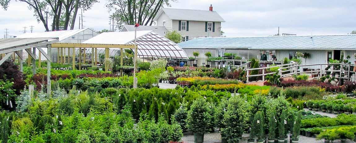 Funky Garden Center Image - Garden Design and Inspirations ...