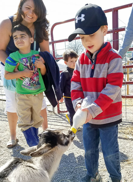 Forever Green Coralville Iowa spring open house free kids activity feeding goats