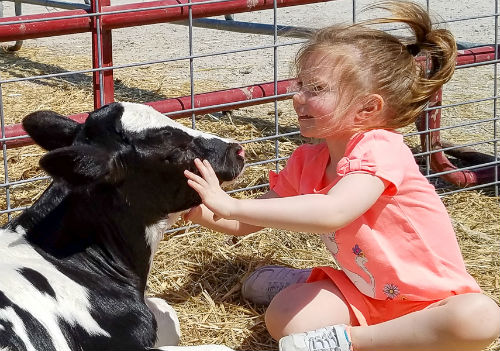 Forever Green Coralville Iowa spring open house free kids activities baby animals